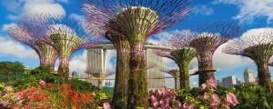 {6E45C239-D09C-418A-8B97-68C9DA58B16C}Singapore 3